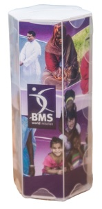 BMS money box